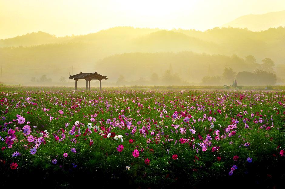 2015년 제9회 농촌경관사진공모 수상작