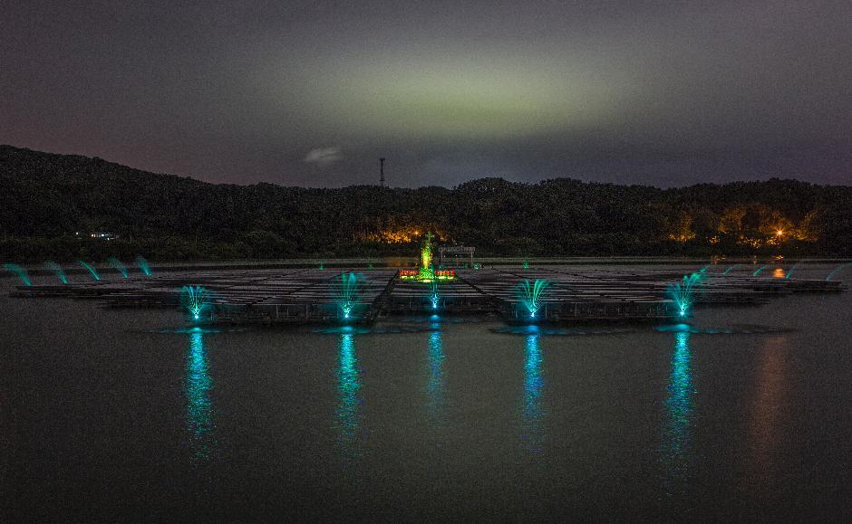 경기도 안성 금광저수지 야경